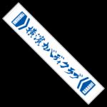 MTyokohama_kabaddi