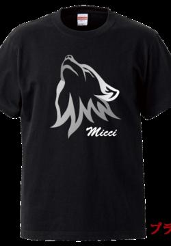 5001_Micci
