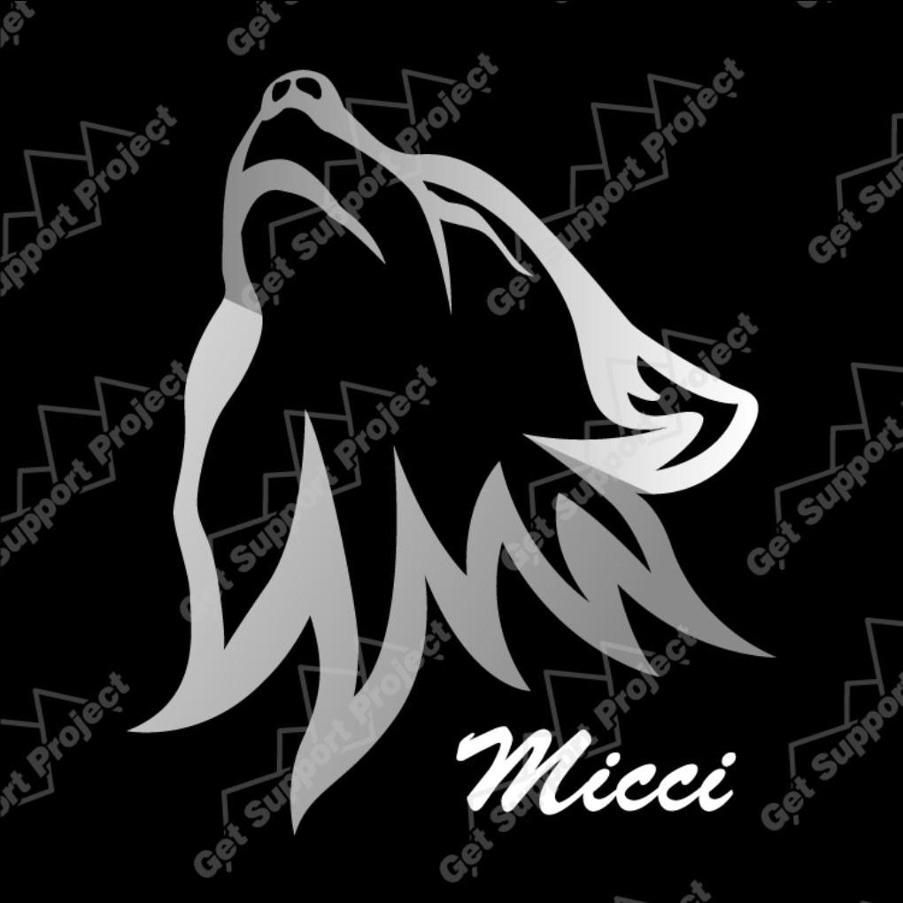5214_Micci