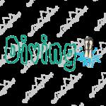 5010diving