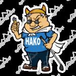 5001hako